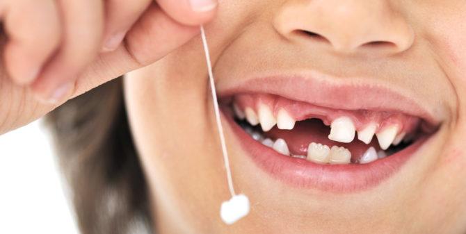 Таблица роста зубов у детей нормы и отклонения от стандартных показателей