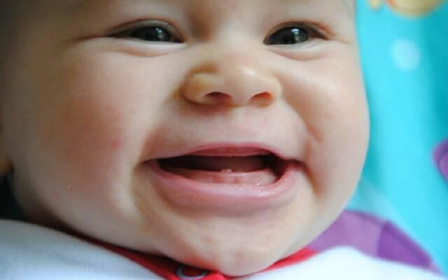 Прорезывание зубов у детей до года комаровский