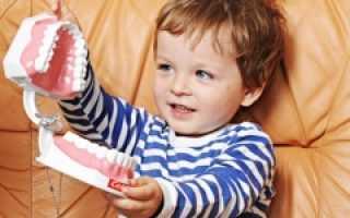Название зубов у ребенка