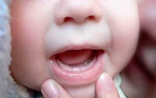Когда какие зубы режутся