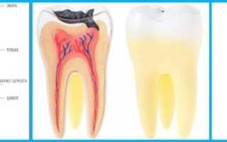 Чем можно облегчить зубную боль: советы и рекомендации
