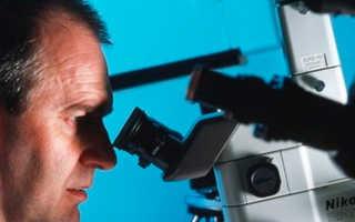 Выращивание зубов из стволовых клеток – что это такое